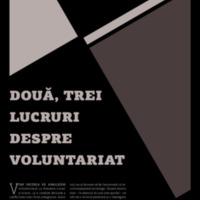 voluntariat.pdf