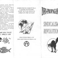 Info-Propaganda - Sindicalismul revoluționar.pdf