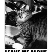leavemealone8.pdf